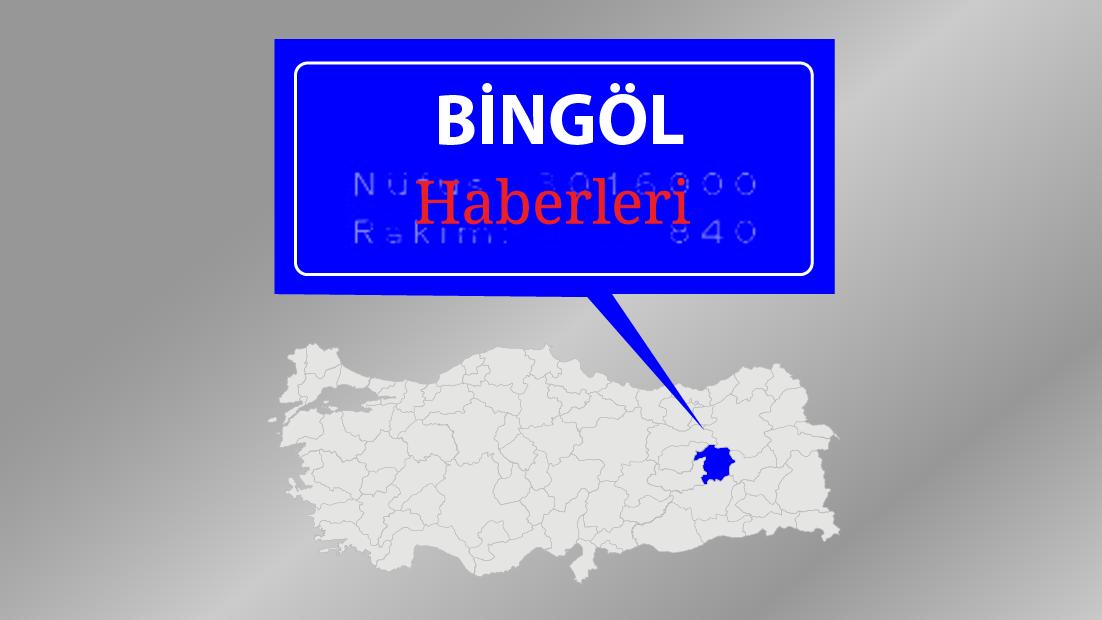 Bingöl'deki terör operasyonu