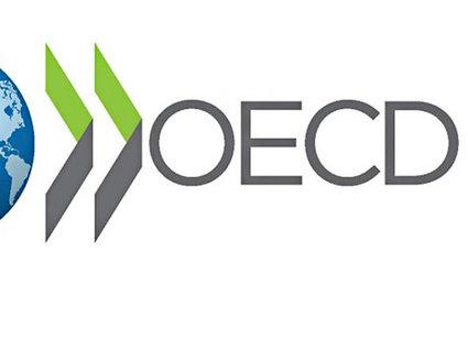 OECD Türkiye için büyüme tahminlerini düşürdü