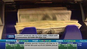 Garanti/Erbil: Kredi büyümesi 2017'de %20'yi geçebilir