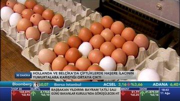 Avrupa'daki yumurta skandalı