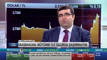 Türkiye yüzde kaç büyüyecek?
