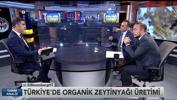 """Zeytinyağında """"organik"""" başarı"""