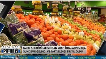 Tarım sektörünün 2017 karnesi