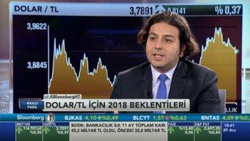 Dolarda 2018 beklentisi