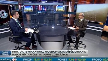"""""""Türkiye'de kaba yem sorunu çözülmeden hayvancılık gelişmez"""""""