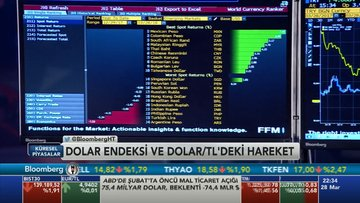 Türk Lirası'nda sert satışın nedeni