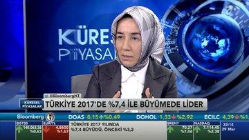 Hatice Karahan- Türkiye ekonomisi