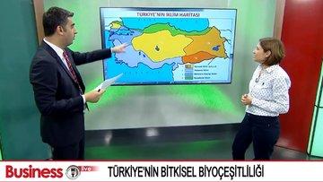 """""""Türkiye'de biyoçeşitlilik tehdit altında"""""""