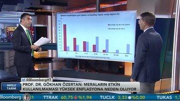 Türkiye'deki tarımsal yapı rekabetçi mi?