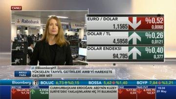 """""""Euro/dolar'da 1.15'in de altı görülebilir"""""""