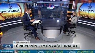 """""""ZEYTİNYAĞINA VERİLEN 80 KURUŞ DESTEK PEK İŞE YARAMIYOR"""""""
