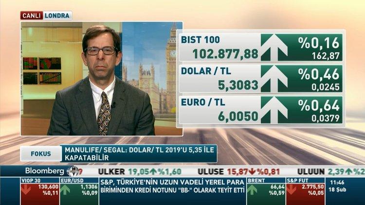 Manulife'ten dolar/TL yorumu