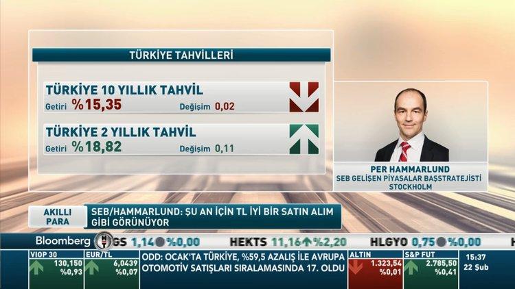 """""""Türk Lirası geçen yılki gibi hassas değil"""""""