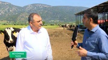"""""""Şirket tarımcılığı Türkiye'nin bünyesine uygun değil"""""""