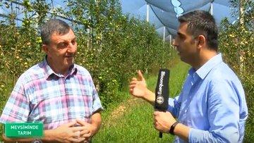 Türkiye'de meyvecilik ve katma değerli üretim