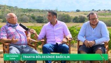 Trakya'da üzümün katma değerli üretim hikayesi