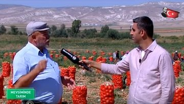 Soğanın üretimden hasada fiyat oluşumu
