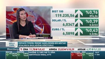 Coface Türkiye'nin risk görünümünü bir kademe iyileştirdi