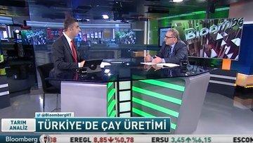 Dünyada ve Türkiye'de çayın ekonomisi