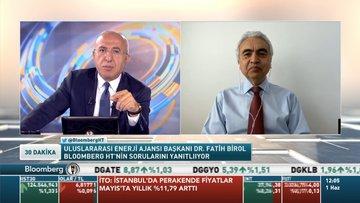 UEA/ Birol: Enerji yatırımları bu sene %20 düşecek, 400 milyar dolar azalacak