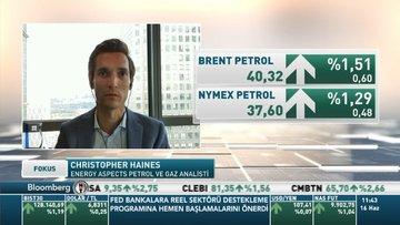 Energy Aspects/ Haines: OPEC+'in üretim kesintisi sürdürülebilir değil