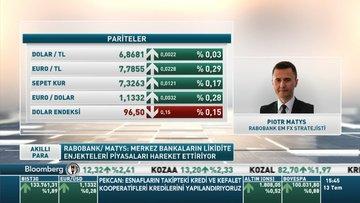 Rabobank/ Matys: Dolar/TL'de görülen bant yapay bir seviye