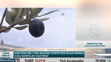 """""""Suriye'den gelen zeytinyağının iç piyasaya sunulması sıkıntı yaratıyor"""""""