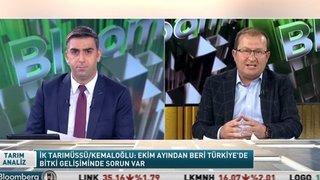 """""""BUĞDAY REKOLTESİNDE KAYIP YÜZDE 15-20'Yİ BULABİLİR"""""""