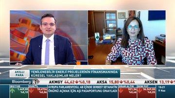 Garanti BBVA/Edin: Yeşil dönüşümde yatırımların uzun vadede geri döndüğünü görüyoruz