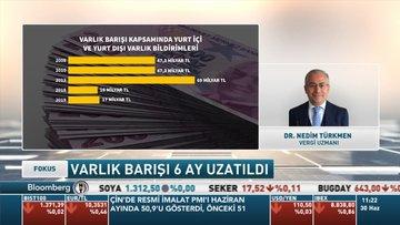 Vergi Uzmanı Dr. Nedim Türkmen: Pandemide 6 aylık uygulama çok başarılı olamadı