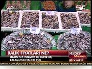 Balık fiyatları ne?