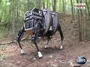 """Robot köpek """"Alfadog"""""""