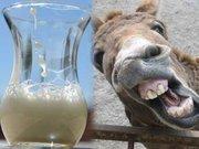 Eşek sütünün akla ziyan faydaları