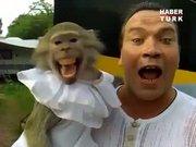 Maymun ve sahibi çığlık çığlığa