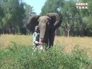 Tek eliyle fili durdurdu!