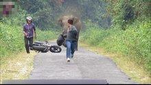 Fil yol kesip motosikletli gençleri kovaladı