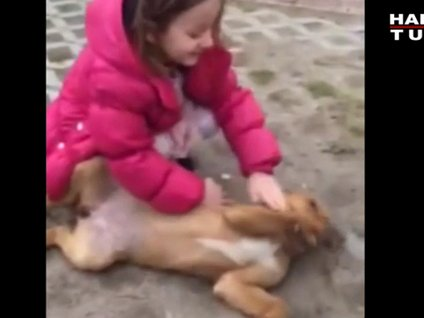 Beren ve köpek sevgisi