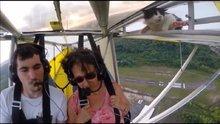Uçağın kanadındaki kedi!