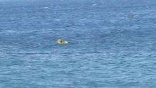 /video/haber/izle/denizdeki-bebek/143928