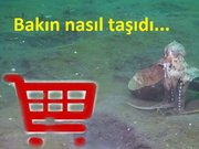 Ahtapotun alışverişi
