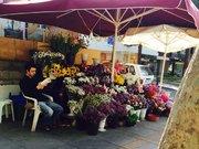 Çiçekçi Mehmet'i ezdi, 22 gündür aranıyor