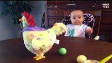 Yumurtlyan tavuk gören bebek