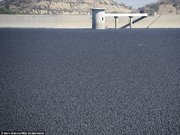 Baraja 96 milyon lastik top döktüler