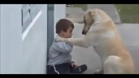 Down Sendromlu çocuk ile Köpeğin dostluğu