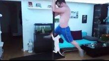 /video/komedi/izle/sahibiyle-birlikte-direk-dansi-yapan-kedi/147800