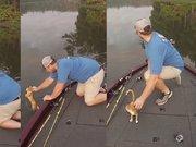 Balığa çıktı kedi yakaladı