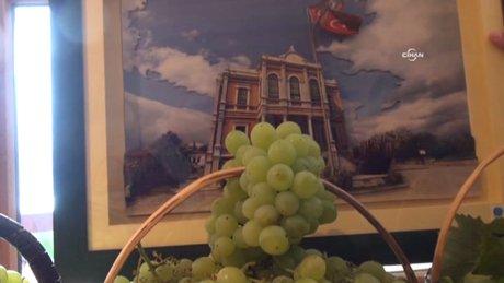 En güzel üzüm yarışması