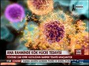 Ana rahminde kök hücre tedavisi