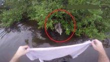 Pelikan böyle kurtarıldı