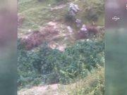 Arnavutluk polisi 3.2 ton esrar ele geçirdi